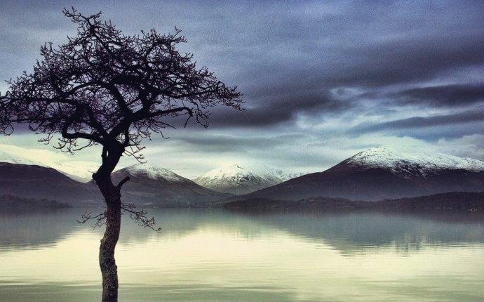 Кем были Левиафан и Бегемот, описанные в Библии? | Духовная жизнь
