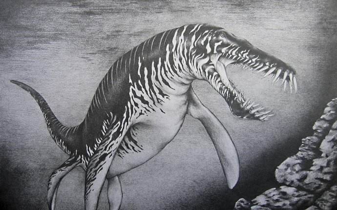 Левиафан-бегемот=дракон?