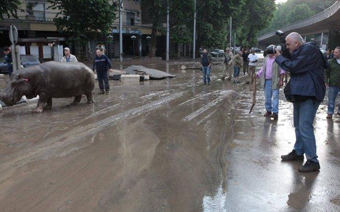 Наводнение в Тбилиси: армян среди жертв наводнения, по